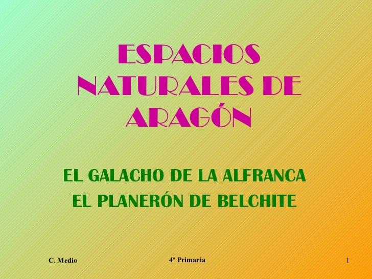 ESPACIOS NATURALES DE ARAGÓN EL GALACHO DE LA ALFRANCA EL PLANERÓN DE BELCHITE