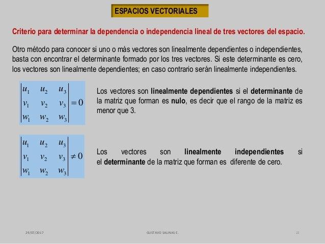 Dependiente e independiente lineal