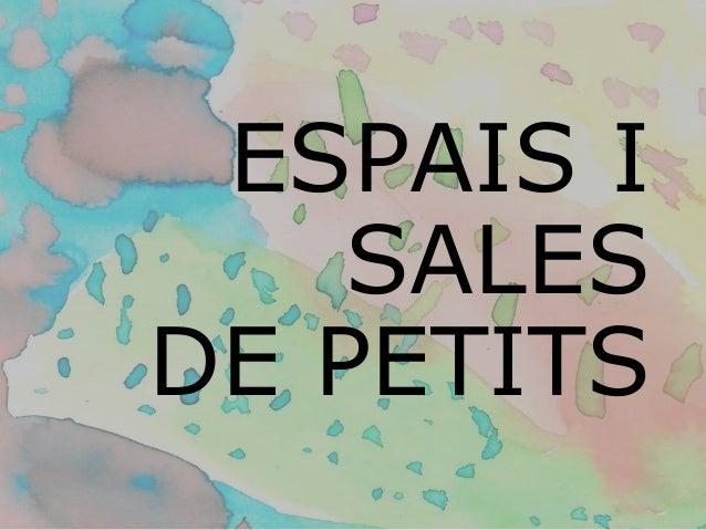 ESPAIS I SALES DE PETITS