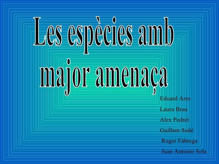 Les espècies amb major amenaça Eduard Ares Laura Brau Alex Pedret Guillem Suñé Roger Fàbrega  Juan Antonio Sola