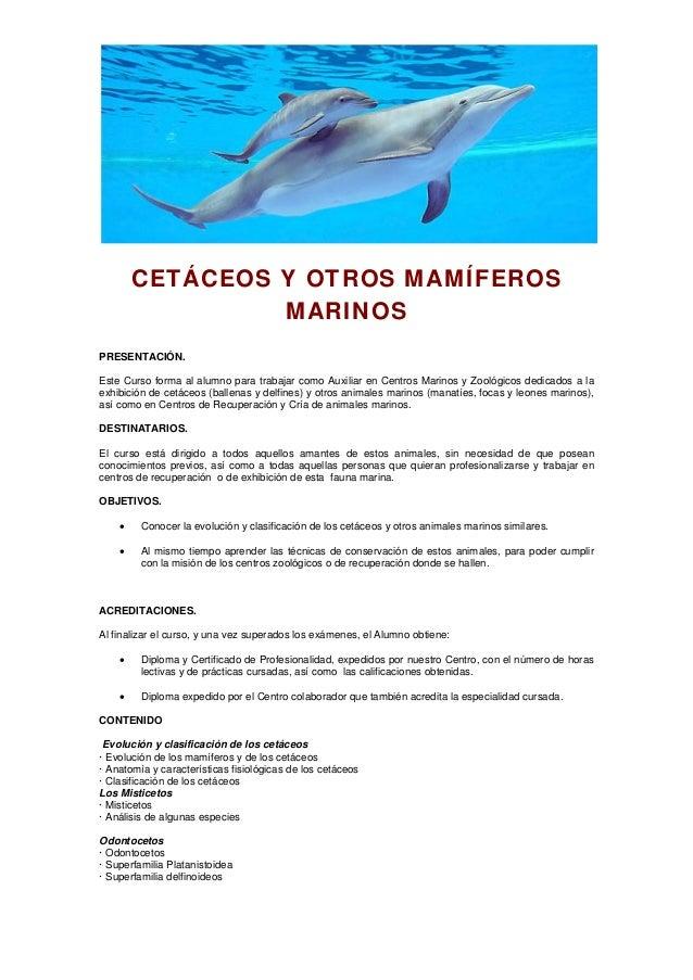 Especialista en cetáceos