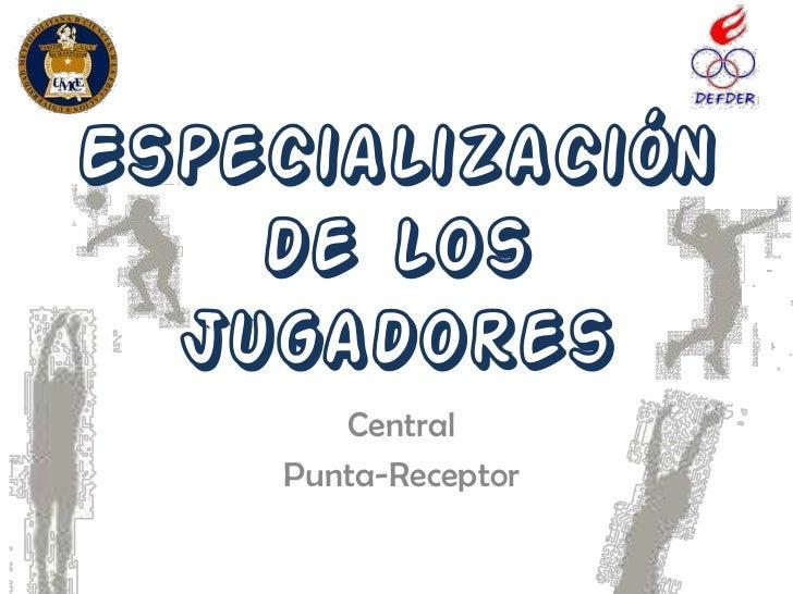 Especialización    de los  Jugadores       Central    Punta-Receptor