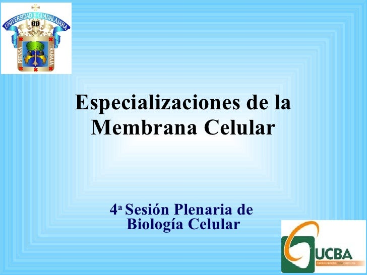 Especializaciones de la Membrana Celular 4 a  Sesión Plenaria de  Biología Celular