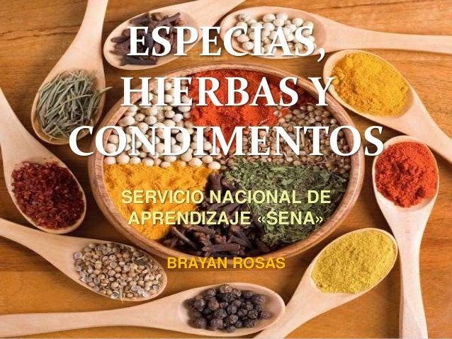 ESPECIAS Y HIERBAS EBOOK