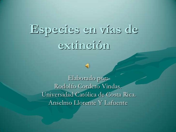 Especies en vías de extinción<br />Elaborado por: <br />Rodolfo Cordero Vindas.<br /> Universidad Católica de Costa Rica. ...