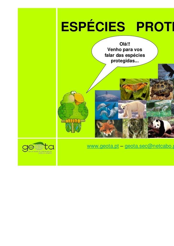 ESPÉCIES PROTEGIDAS                Olá!!          Venho para vos         falar das espécies            protegidas...   www...