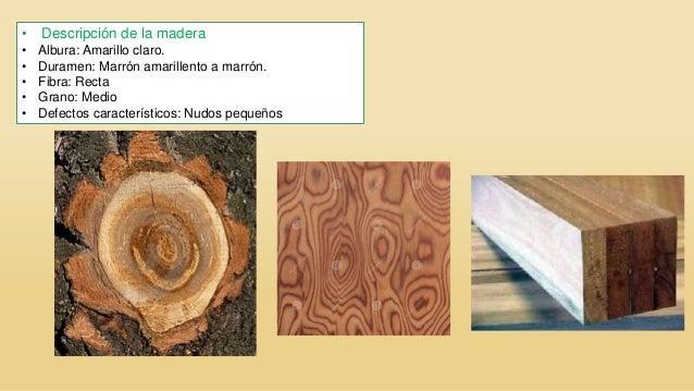 Especies de maderas en el per - Maderas al corte ...