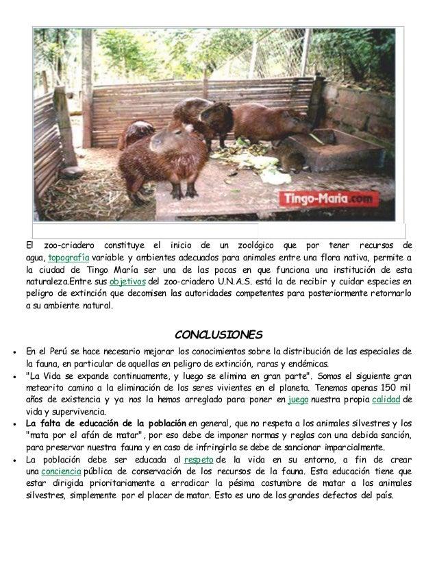 El zoo-criadero constituye el inicio de un zoológico que por tener recursos de  agua, topografía variable y ambientes adec...