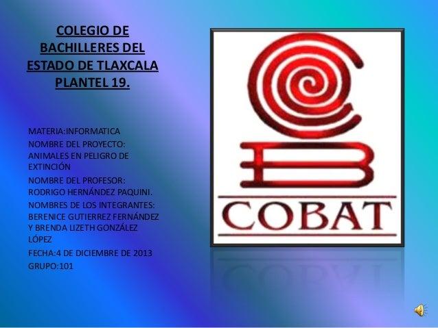 COLEGIO DE BACHILLERES DEL ESTADO DE TLAXCALA PLANTEL 19. MATERIA:INFORMATICA NOMBRE DEL PROYECTO: ANIMALES EN PELIGRO DE ...
