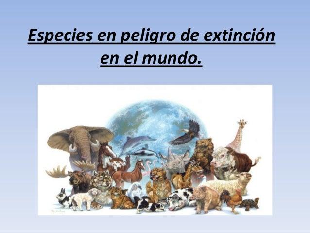 Especies en peligro de extinción         en el mundo.