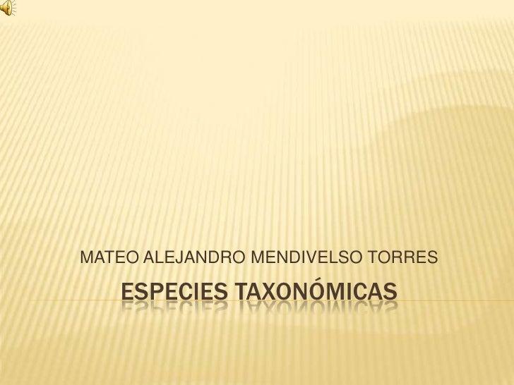 MATEO ALEJANDRO MENDIVELSO TORRES   ESPECIES TAXONÓMICAS