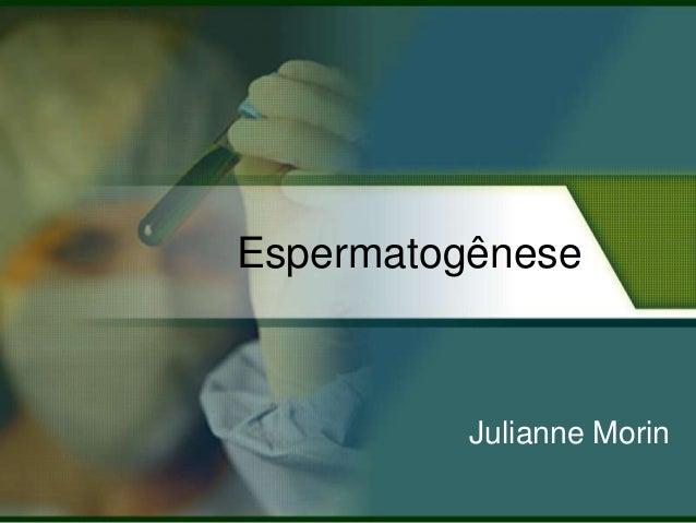 Espermatogênese  Julianne Morin