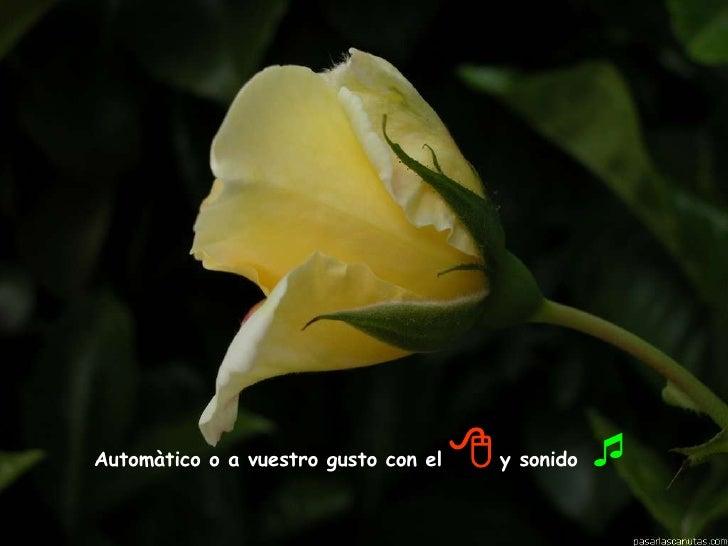 Automàtico o a vuestro gusto con el      y sonido  