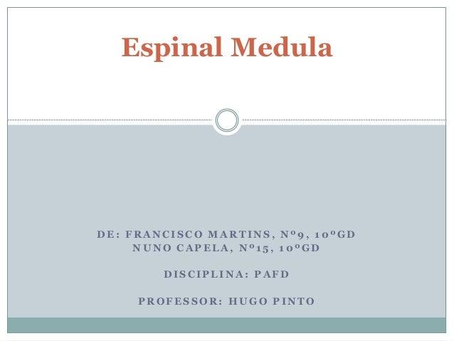 Espinal Medula  DE: FRANCISCO MARTINS, Nº9, 10ºGD  NUNO CAPELA, Nº 1 5 , 10ºGD  DISCIPLINA: PAFD  PROFESSOR: HUGO PINTO