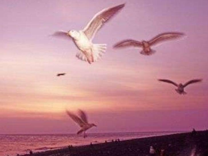 Espiritualidade é diferente de Religião… A religião não é apenas uma, são centenas. A espiritualidade é apenas uma. A reli...