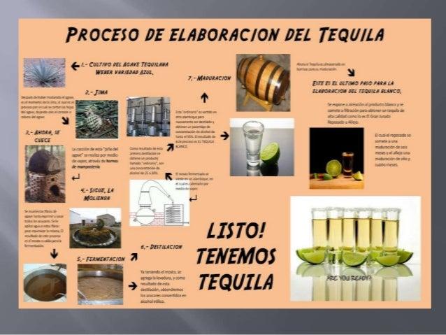 ELABORACION DEL TEQUILA EBOOK
