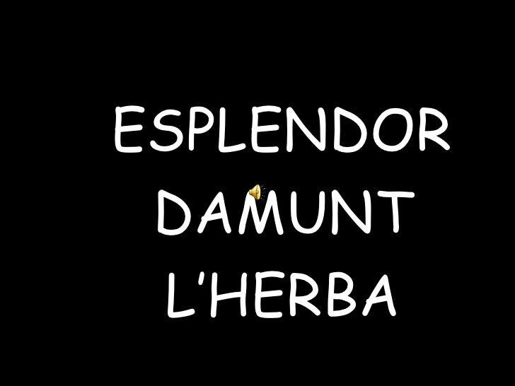 <ul><li>ESPLENDOR  </li></ul><ul><li>D A MUNT </li></ul><ul><li>L'HERBA </li></ul>
