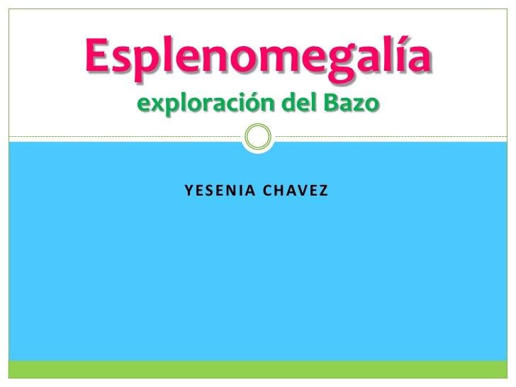 Yesenia chavez<br />Esplenomegalíaexploración del Bazo<br />