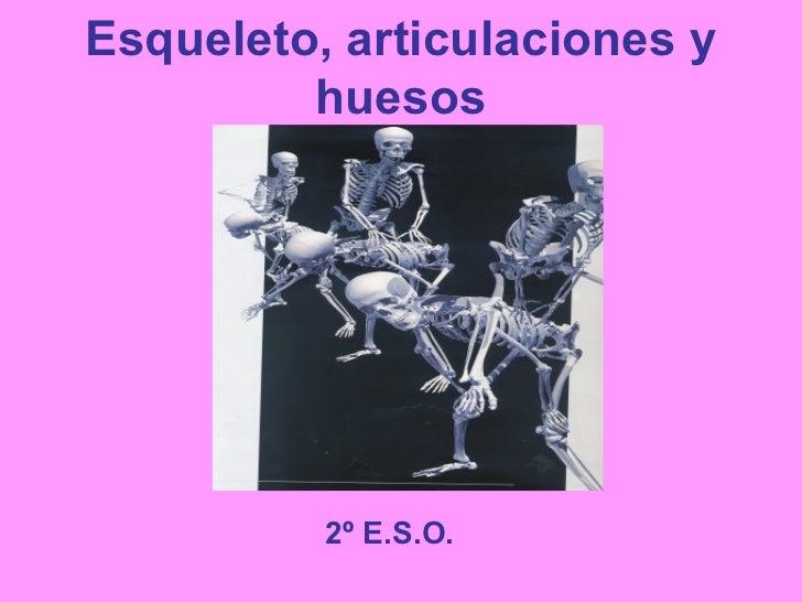 Esqueleto, articulaciones y huesos 2º E.S.O.