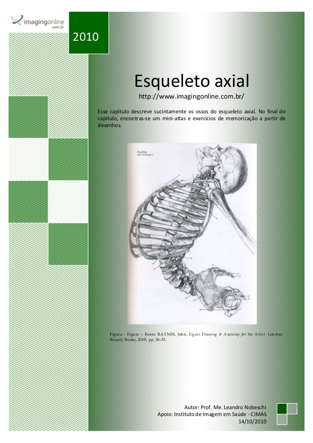Esqueleto axial http://www.imagingonline.com.br/ Esse capítulo descreve sucintamente os ossos do esqueleto axial. No final...