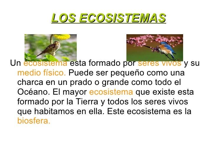LOS ECOSISTEMASUn ecosistema esta formado por seres vivos y su medio físico. Puede ser pequeño como una charca en un prado...