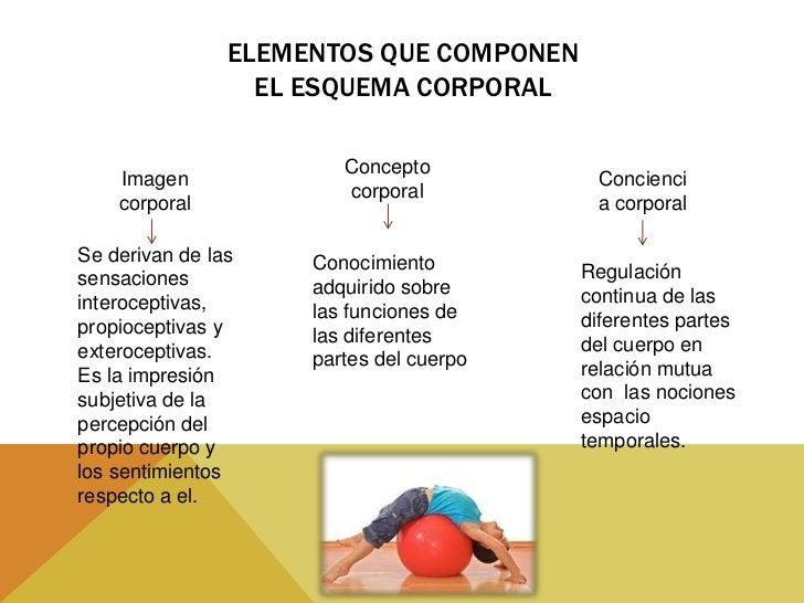 ACTIVIDADES•   Metódicas y secuenciales de las diferentes partes de su cuerpo:    Para que el niño tome conciencia , sepa ...