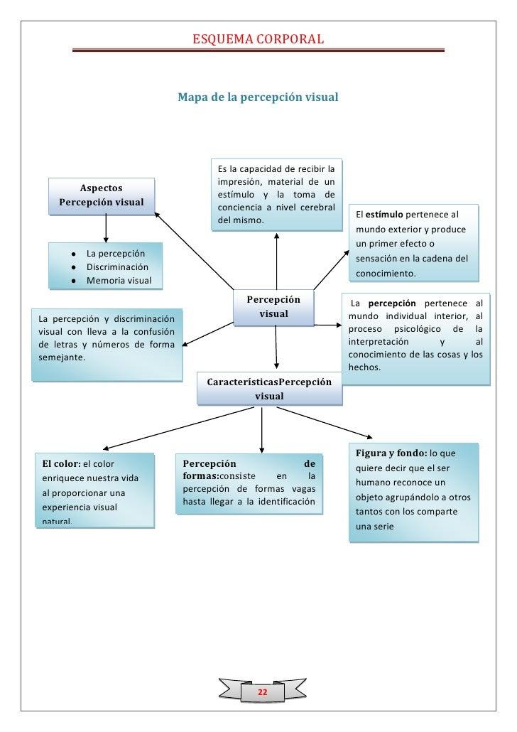 Moderno Diagrama De Las Mujeres Corporal Fotos - Anatomía de Las ...