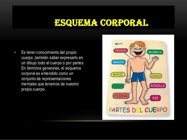 Esquema corporal por Paola Pilar Guevara Slide 2