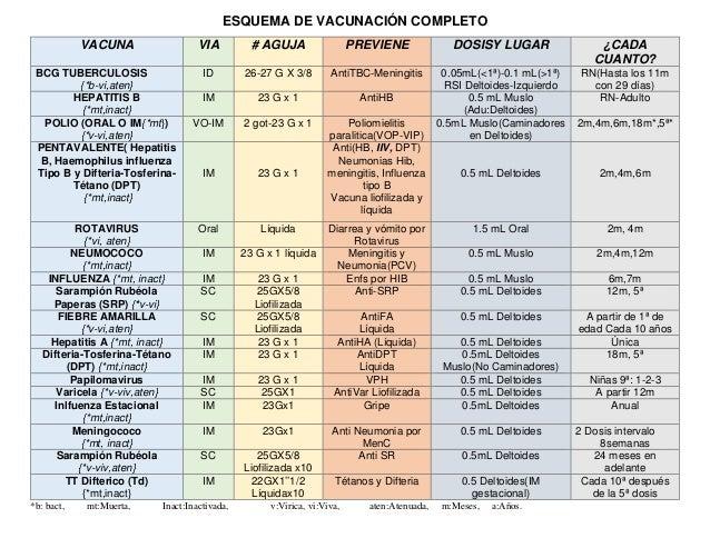 ESQUEMA DE VACUNACIÓN COMPLETOVACUNA VIA # AGUJA PREVIENE DOSISY LUGAR ¿CADACUANTO?BCG TUBERCULOSIS{*b-vi,aten}ID 26-...