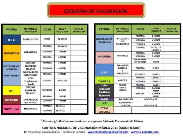 Esquema De Vacunacion En Mexic
