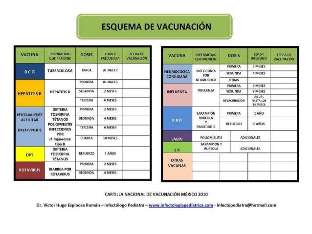 manual de vacunacion 2008 09 pdf