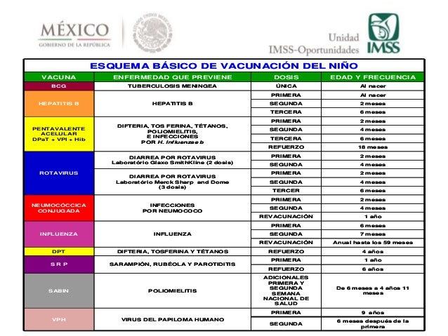 Esquema de vacunacion