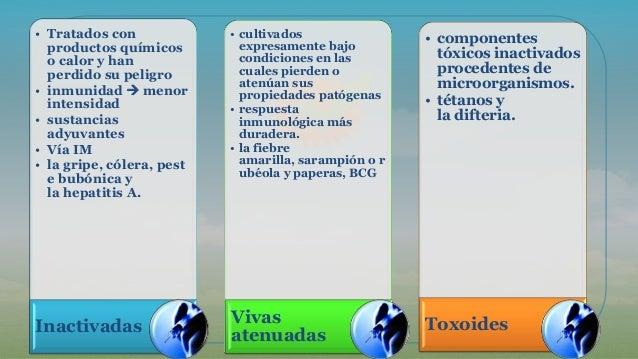 • Tratados con productos químicos o calor y han perdido su peligro • inmunidad  menor intensidad • sustancias adyuvantes ...