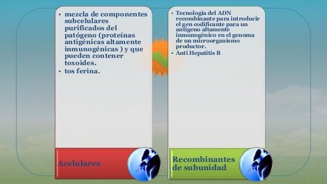 • mezcla de componentes subcelulares purificados del patógeno (proteínas antigénicas altamente inmunogénicas ) y que puede...