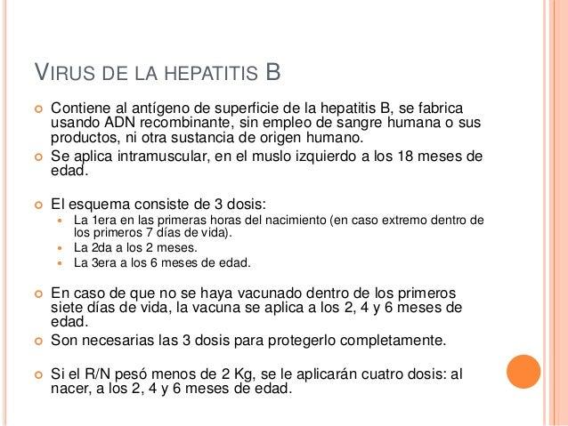 A Que Edad Se Aplica La Vacuna De Hepatitis B - Nueva..