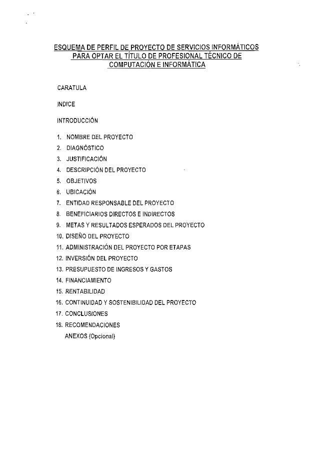 ESQUEMA DE PERFIL DE,PROYECTO DE SERVICIOS,INFORMÁTICOS    PARA OPTAR EL TITULO DE PROFESIONAL TECNICO DECARATULAINDICEINT...