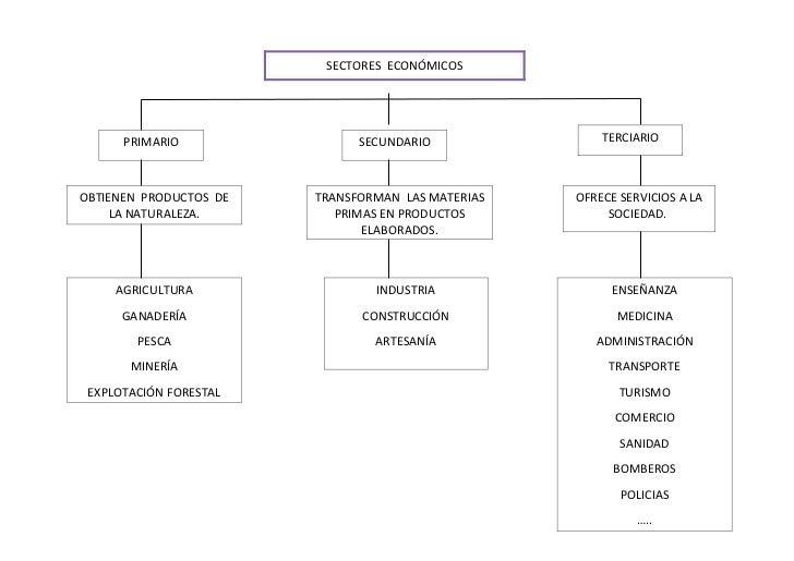 SECTORES ECONÓMICOS      PRIMARIO                SECUNDARIO               TERCIARIOOBTIENEN PRODUCTOS DE   TRANSFORMAN LAS...