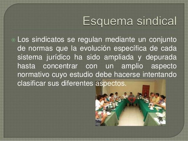    El sindicato es la asociaciónde trabajadores o patrones que esta constituidapara el estudio, mejoramiento y defensa de...