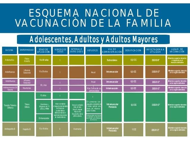 ESQUEMA NACIONAL DEVACUNACIÒN DE LA FAMILIAAdolescentes, Adultos y ...