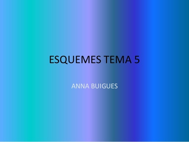 ESQUEMES TEMA 5 ANNA BUIGUES
