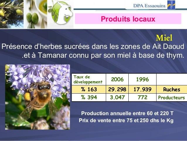 Présence d'herbes sucrées dans les zones de Ait Daoud et à Tamanar connu par son miel à base de thym.. Taux de développeme...