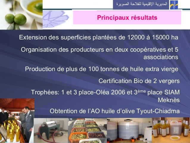 Extension des superficies plantées de 12000 à 15000 ha Organisation des producteurs en deux coopératives et 5 associations...