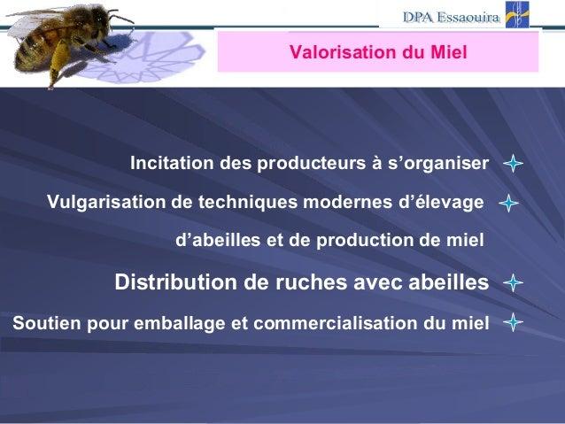 Valorisation du Miel Incitation des producteurs à s'organiser Vulgarisation de techniques modernes d'élevage d'abeilles et...