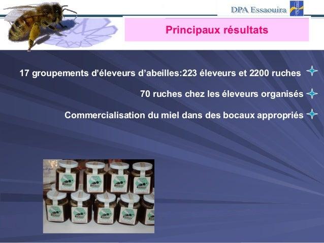 17 groupements d'éleveurs d'abeilles:223 éleveurs et 2200 ruches 70 ruches chez les éleveurs organisés Commercialisation d...