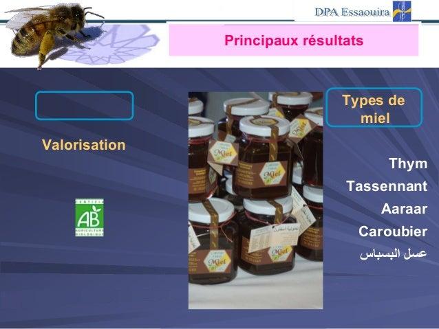Types de miel Valorisation Thym Tassennant Aaraar Caroubier اﻟﺒﺴﺒﺎس ﻋﺴﻞ Principaux résultats