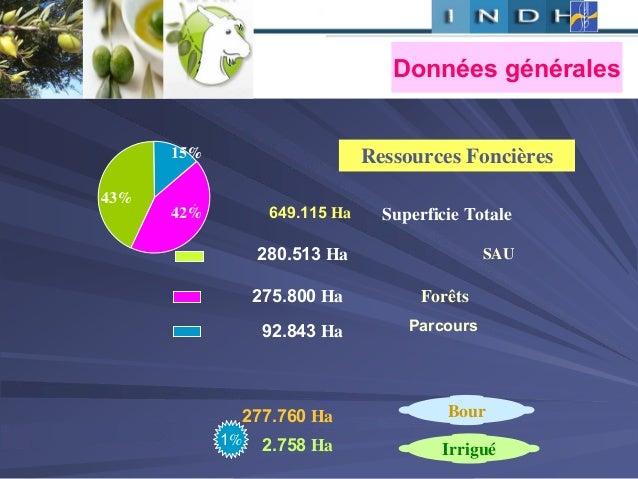 , Ressources Foncières 280.513 Ha 92.843 Ha 275.800 Ha 2.758 Ha 277.760 Ha 1% 15% 42% 43% Forêts SAU Parcours Superficie T...