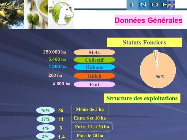 Statuts Fonciers , Melk259.000 ha Collectif5.400 ha Habous1.200 ha Guich200 ha Etatha4.800 96% Structure des exploitations...
