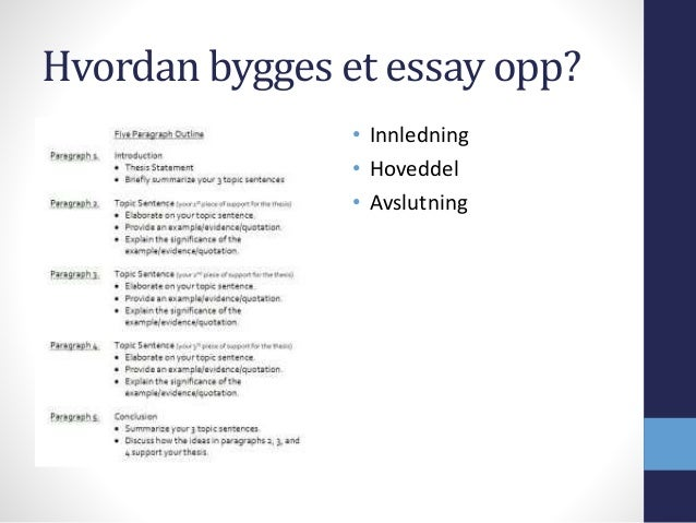 essay hvordan skrive