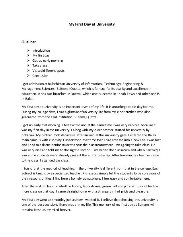 Our university essay examples