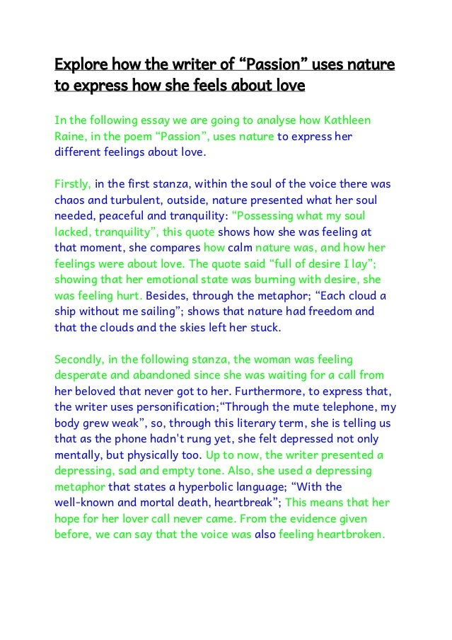 essay an expression of love